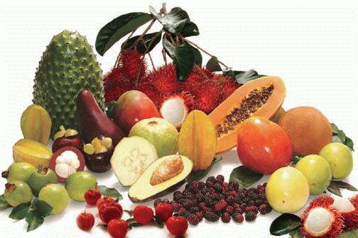 foro-frutas