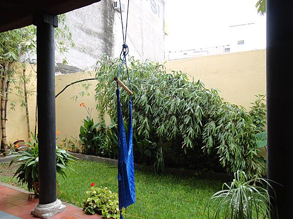 Mazatlan bamboo