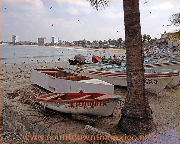Mazatlan Panga Fishing Boat