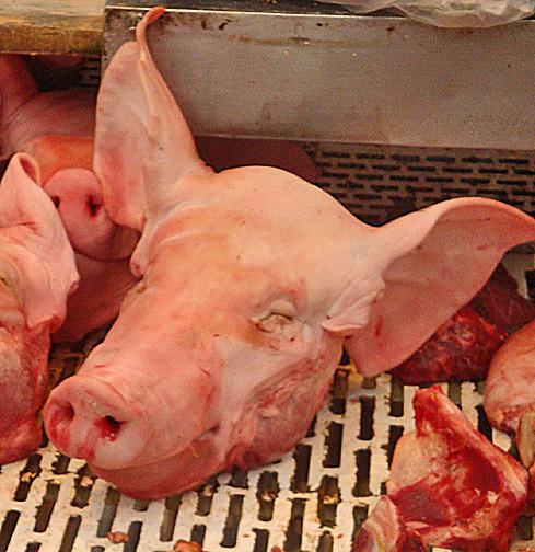pig head Mazatlán's Pino Suárez Mercado